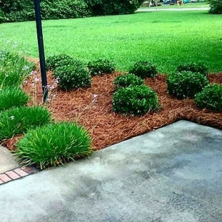 landscapers midway garichmond hill ga