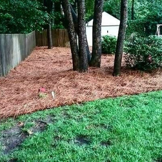 lawn care services midway ga richmond hill ga